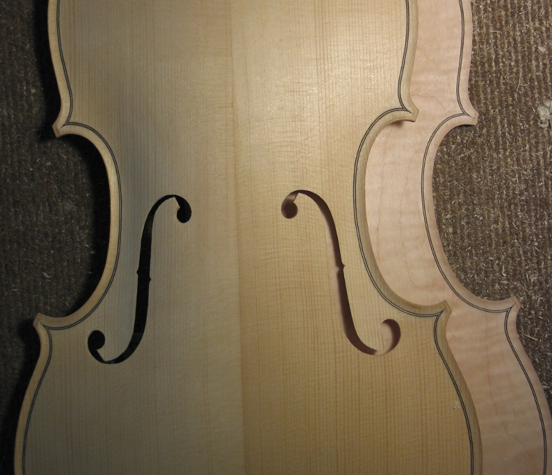 viola top and bottom plates