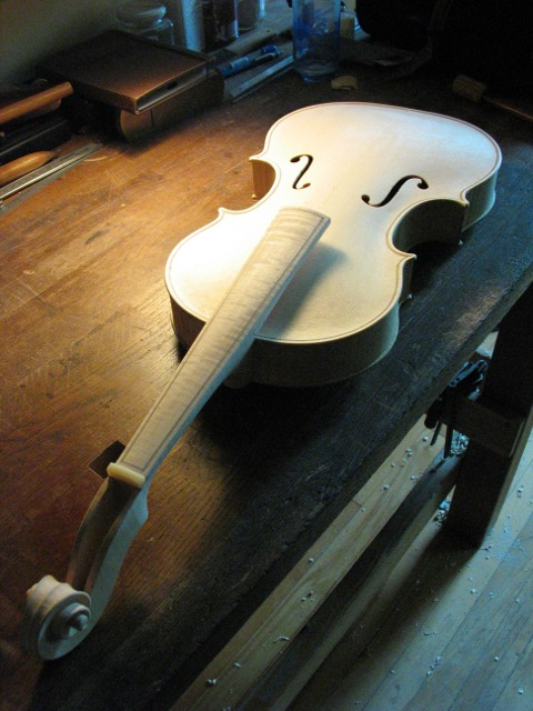 Baroque amati viola in the white